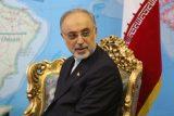 صالحی: ایران به تعهدات خود برای لغو تحریمها پایبند است