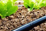 با اعتبار بیش از ۱۴ میلیارد ریال، سه پروژه کشاورزی در اندیمشک افتتاح شد
