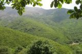 هنوز طرح صیانت از منابع طبیعی در شهرستان دزفول تعریف نشده است
