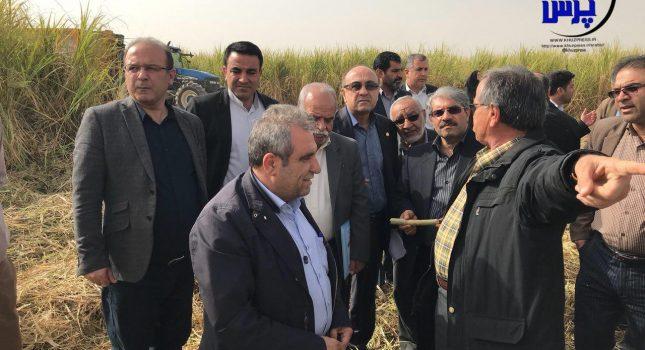 گزارش تصویری بازدید لاهیجان زاده مدیر کل محیط زیست خوزستان از کشت و صنعت کارون شوشتر