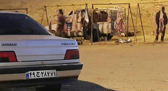 کشتار بین جاده ای تهدید سلامت و امنیت غذایی مردم