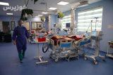 ۷۸۰ مورد بیمار کرونایی در اندیمشک رهگیری و شناسایی شد