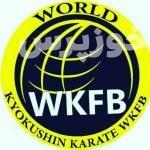 بانوان کاراتهکار اندیمشکی صاحب ۱۷ مدال جهانی کیوکشین کاراته شدند