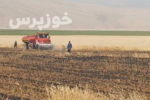 آتش ۴ هکتار از مزارع ایذه را خاکستر کرد