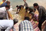 رهاسازی ۱۸۵ هزار قطعه بچه ماهی در دریاچه سد کارون۳