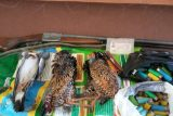 دستگیری دو گروه شکارچی غیرمجاز در شوشتر