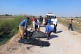 تصادف در دزفول خانواده اندیمشکی را به کام مرگ کشاند